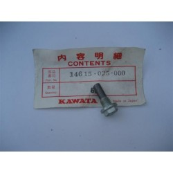 Honda Pin Cam Chain Guide Bolt