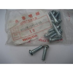 Honda Screw Set